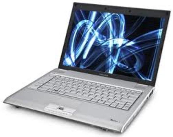 Fist portable computer
