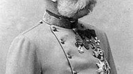 Franz Josef timeline