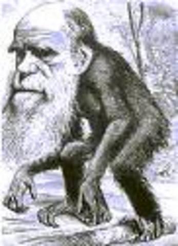 Los grandes naturalistas:
