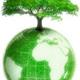 Green earth2