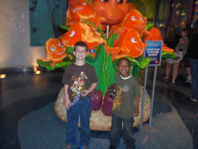 First time at the Atlanta Aquarium