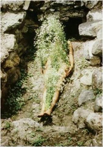 Ana Mendieta. Flowers on Body, 1973