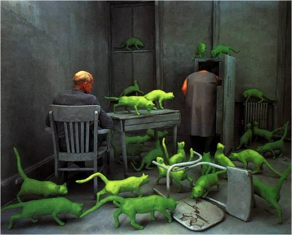 Sandy Skoglund. Radioactive Cats, 1980