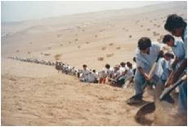 Francis Alys. When Faith Moves Mountain, 2002