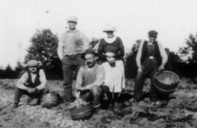 Farmers profited from the booming economy of WW1