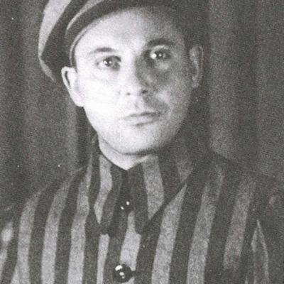 Vladek's Life in the Holocaust timeline