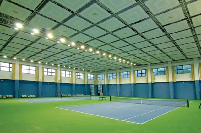 Indoor grass tennis court
