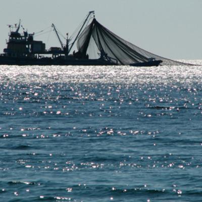 Ley de General de Pesca y Acuicultura timeline