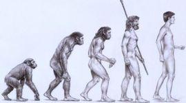 Pre-DArwin Evolutionary Theory  timeline