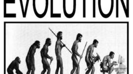 Pre&Post Darwinian Theories of Evolution timeline