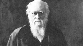 Post and Pre Darwin timeline