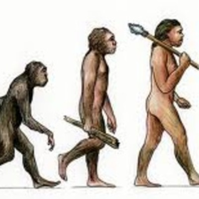Early Theories of Evolution  timeline