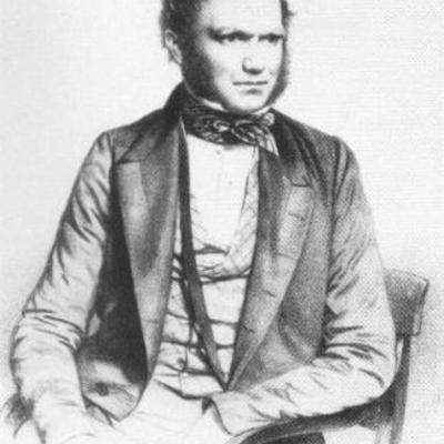 Before Darwin timeline