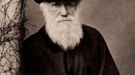 Darwin y su Obra timeline