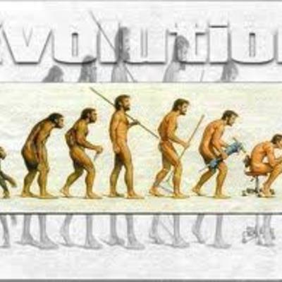 La evolución de los homínidos - Marta L. timeline