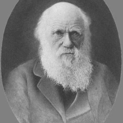 La vida de Darwin timeline