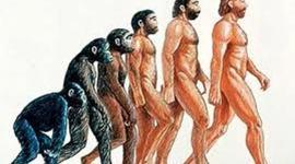 Pre-Darwinian Timeline