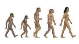 The begining of Evolution timeline