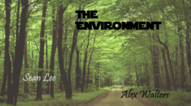 The History of the Environment timeline