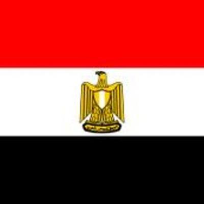 Egypt Arab Spring Timeline