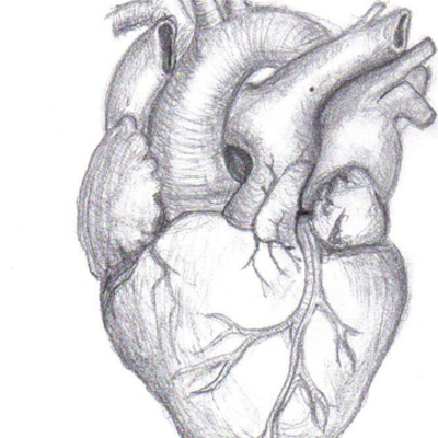Events Leading to the First Heart Transplant timeline