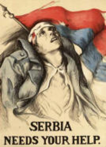 Austria declared war on Bosnia, Russia mobilizes army towards Austria