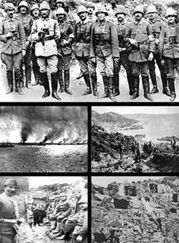 The Allies launched the Gallipoli campaign