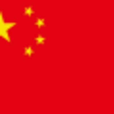 DIPITY CHINA PROJECT timeline
