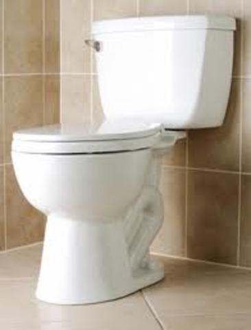 Invention of the Flush Toilet