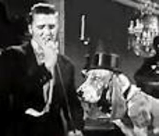 """""""Hound Dog"""" (no, really!)"""