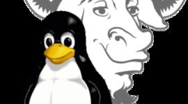 Linea de tiempo de la Historia de software libre timeline