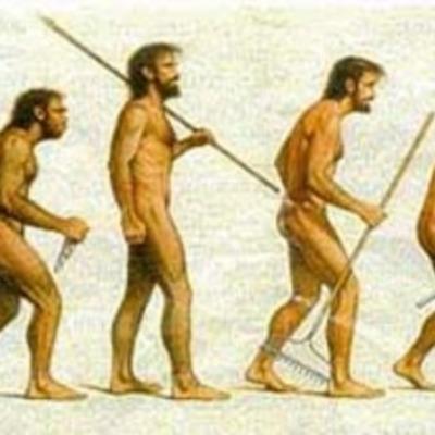 la historia de l'humanitat timeline