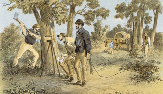 free settlers arrive