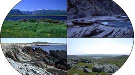 Geological and Life Evolution timeline