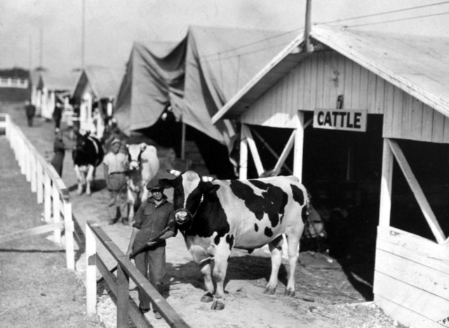 Inaugural L.A. County Fair