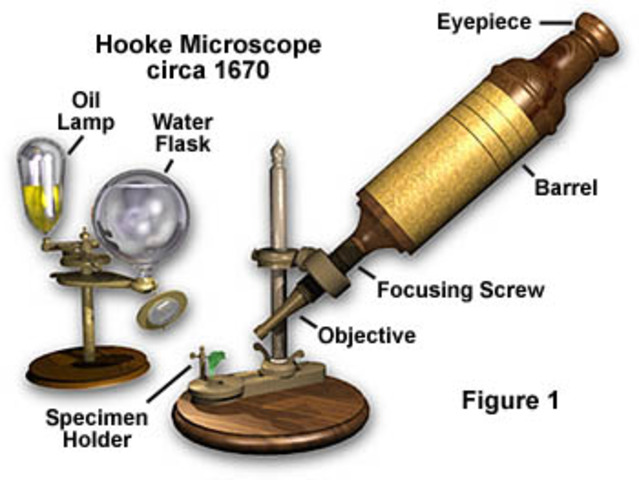 (1665 A.D) Creation of Microscope