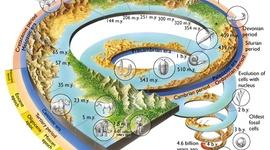 7_Woratyla_Westphal_History of Earth timeline