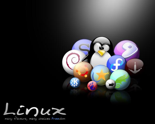se lanzó Linux 2.6.36