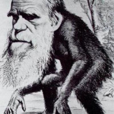Biogarafía de Darwin timeline