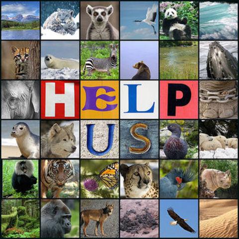 Endangered Species Act   Cites: http://en.wikipedia.org/wiki/Endangered_Species_Acthttp://www.humanespot.org/endangered?gclid=CObvt6Saj68CFRKBhwodsD1W0g