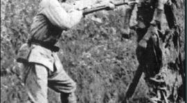 The Rape of Nanking timeline