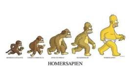 Teoria de la Evolución timeline