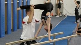 Life in Gymnastics timeline