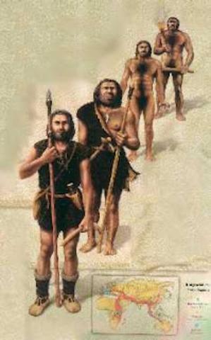 homo  sapiens (hombre actual)  40 000 años a.c