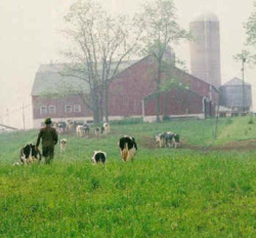 Family Farming in Decline