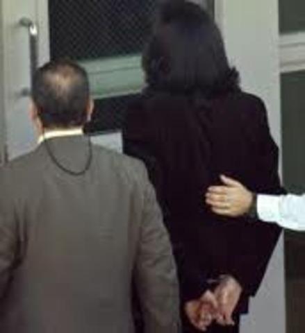 michael arrest