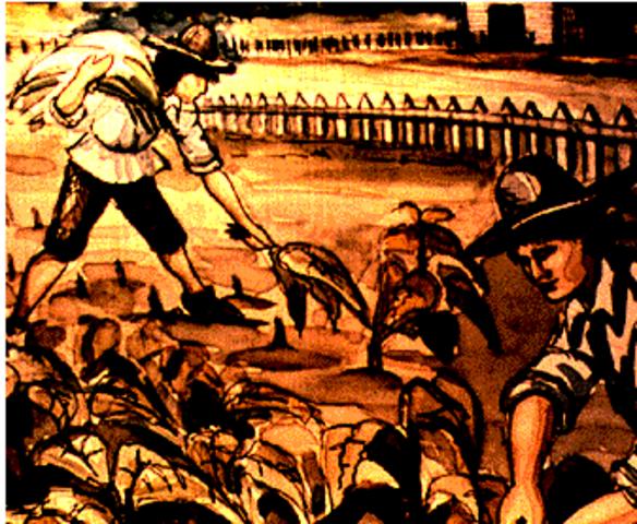 Constitutional timeline | Timetoast timelines  |Indentured Servants From England
