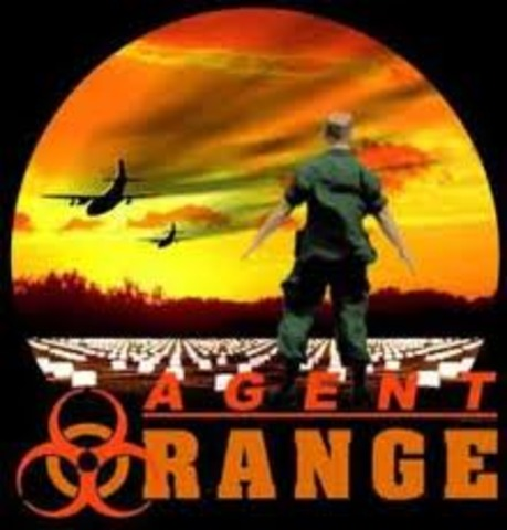 Veterans were Affected by Agent Orange
