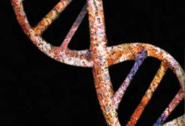 Primeras secuencia de genomas