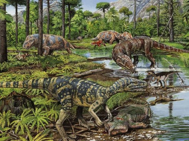 Triassic Period  247 - 203 Million Years Ago